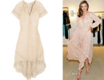 Miranda Kerr's Zimmermann Nightmarch Vine Embroidered Silk-Georgette Dress