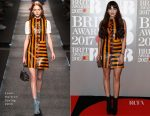 Zara Martin In Louis Vuitton - 2017 BRIT Awards