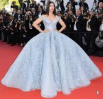 Readers Choice: 2017 Cannes Film Festival Best Red Carpet Looks