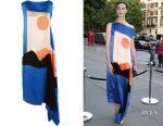 Erin O'Conner's Roksanda Nakato hammered-silk, satin and crepe de chine midi dress