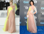 Mary Elizabeth Winstead In Delpozo - 2018 Critics' Choice Awards