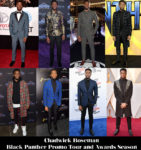 Which Was Your Favourite Chadwick Boseman 'Black Panther' / Awards Season Look?