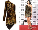 Dua Lipa's Saint Laurent Leopard-Print Velvet Dress