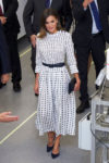 Queen Letizia of Spain In Massimo Dutti - 'Vega-3'