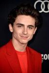 Timothee Chalamet In Louis Vuitton - 'Beautiful Boy' LA Premiere
