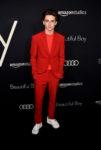 Timothée Chalamet In Louis Vuitton - 'Beautiful Boy' LA Premiere