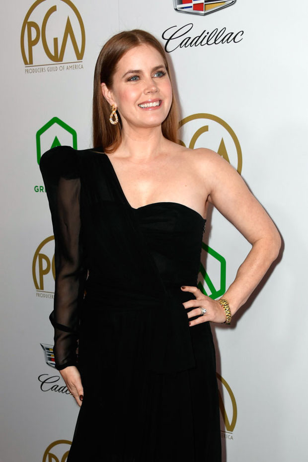 Fashion Blogger Catherine Kallon features Amy Adams In Dundas Couture - 2019 Producers Guild Awards