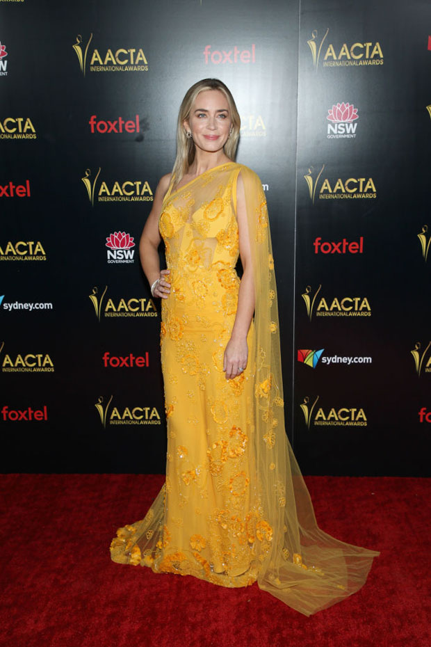 Fashion Blogger Catherine Kallon features Emily Blunt In Elie Saab - 2019 AACTA International Awards