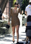 Kendall Jenner Takes A Walk On The Wild Side