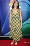 Mandy Moore Is Mad For Plaid At The NBC 2019/20 Upfront