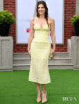Lake Bell's Lemon & Lace Outing For  'The Secret Life Of Pets 2' LA Premiere