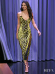 Kendall Jenner Was Oozing Animal Magnetism On The Tonight Show Starring Jimmy Fallon