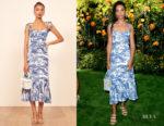 Nesta Cooper Reformation Blue Print Nikita Dress