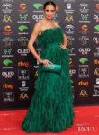 Nieves Alvarez Wore Alberta Ferretti Limited Edition To The 2020 Goya Awards