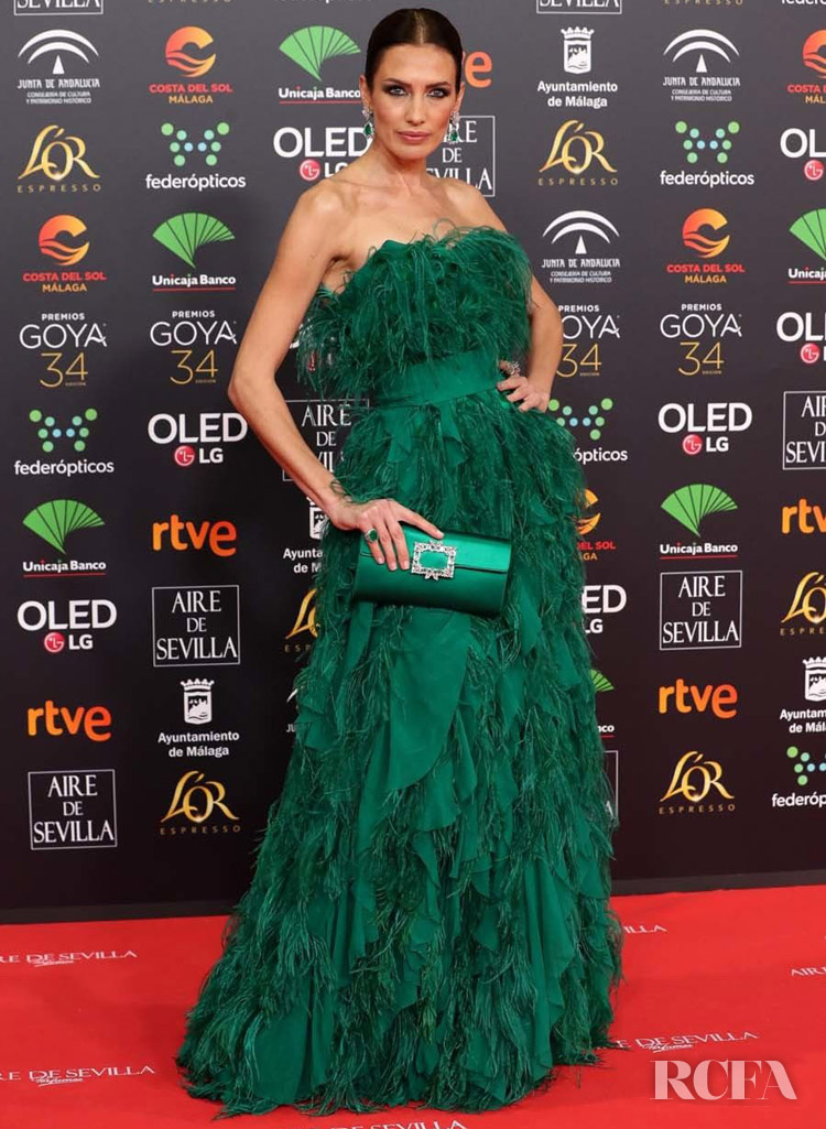 Nieves Alvarez Wore Alberta Ferretti Limited Edition To The 2020 Goya Awards