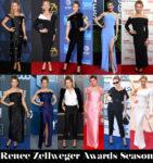 Which Was Your Favourite Renée Zellweger Awards Season Look?