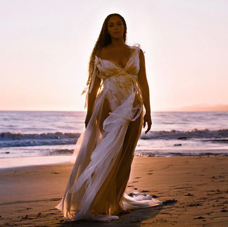 Beyonce Wendy Nichol Black is King
